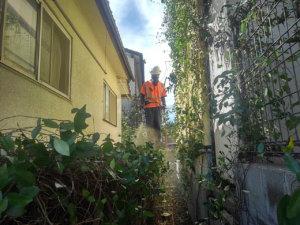 住宅の壁面に蔓延ったカズラにもしっかりと散布して、作業完了