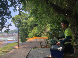 眺めの良い場所でお昼ごはん。外仕事の特権とも言えますね(^-^)
