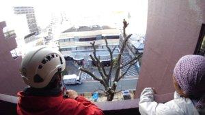 マンションから樹木の枝ぶりを見て最終チェック。手直しを入れる箇所の打ち合わせをします
