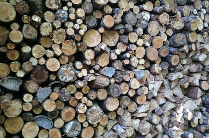 薪用原木の販売 (配達も可能です)