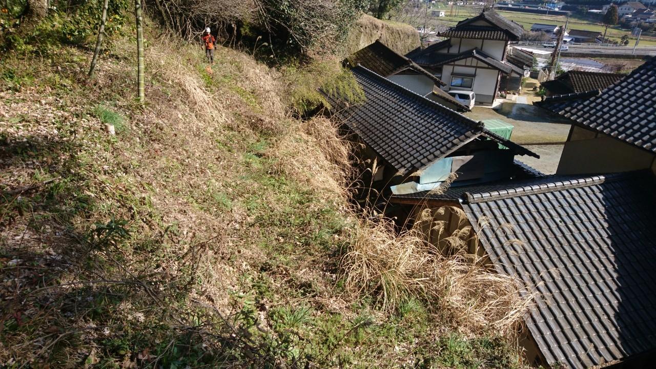 壁面の上にも広い敷地があります。こちらも除草と竹の伐採を行います。