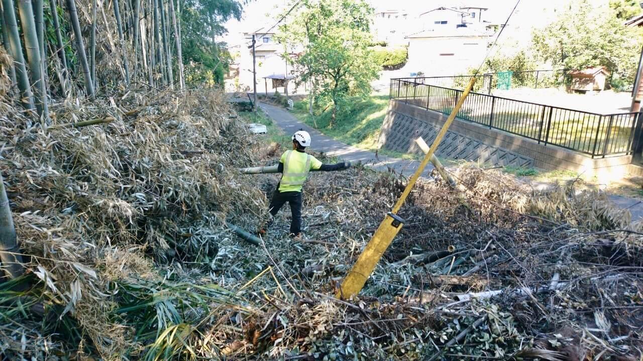 竹は現場に残置するため。同じ長さに切り揃えて綺麗に集材作業を行っていきます。