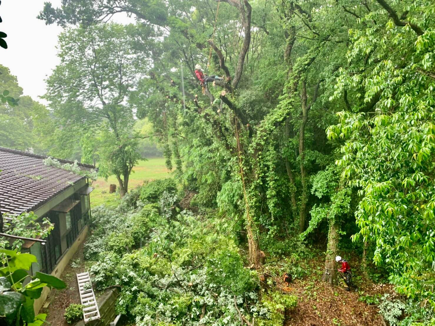 (左上)吊り切リの準備を行う山本(右下)吊り切りを行うロープや機材の準備を行う郡