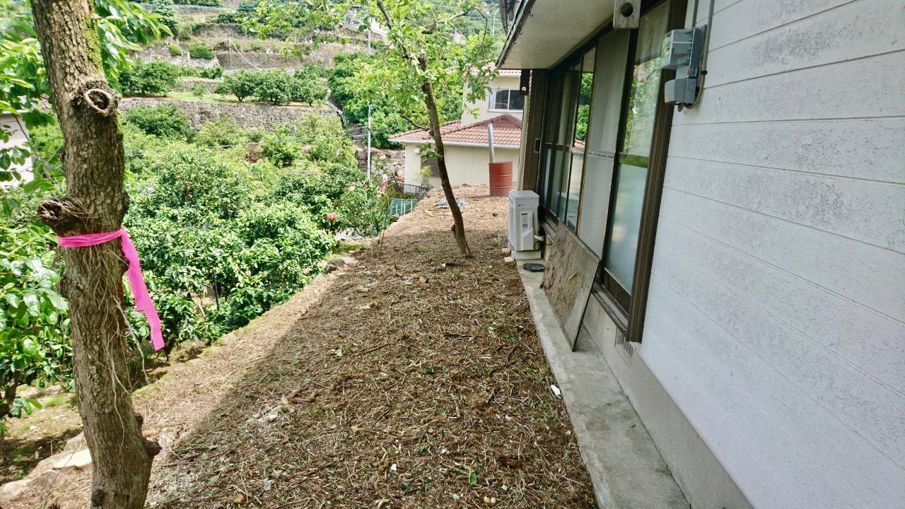 伐採、搬出を終えたお庭の一部