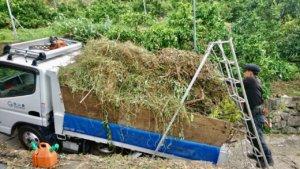 枝葉、雑草は3tダンプにてそれぞれ処分場に運搬。
