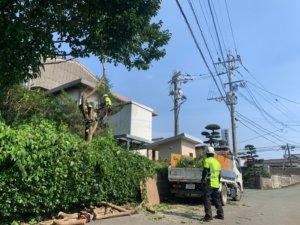 常に注意を払いながら、道路の警戒、枝の積み込みを行うスタッフ藤本