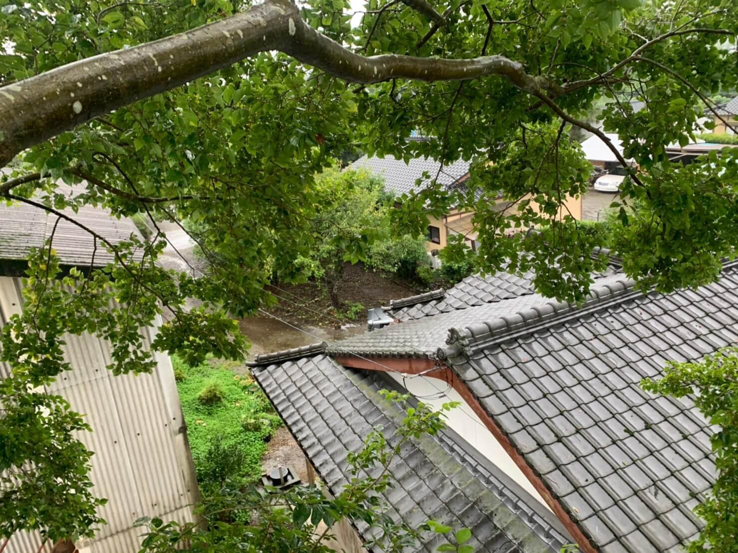 枝の真下には瓦やトタン屋根があるため、作業は慎重かつスピーディーに